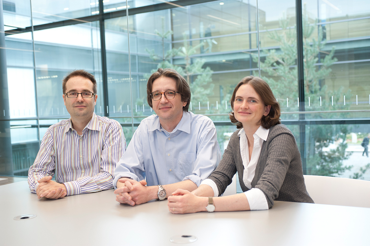 Physics professors Martin Plenio and Fedor Jelezko and the chemist Prof Tanja Weil of the BioQ- research group.