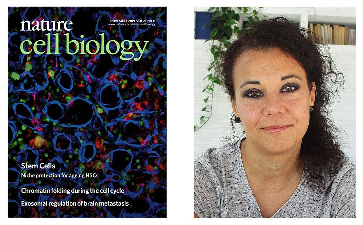 Titelbild auf Nature Cell Biology