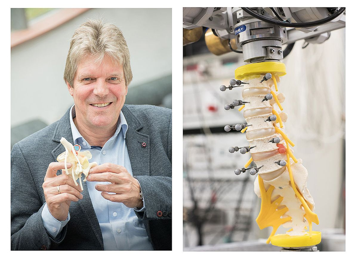 Prof. Hans-Joachim Wilke with a model of a vertebral bone and a synthetic intervertebral disc (photos: Elvira Eberhardt / Ulm University)