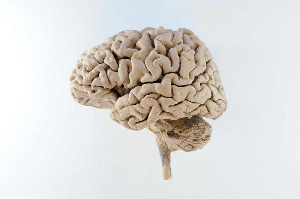 Neurodegeneration - Ulm University