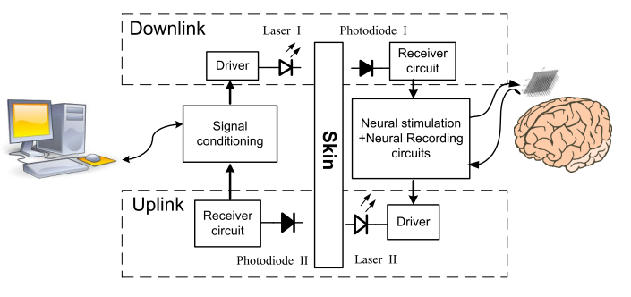 Figure - Block Diagram of the bidirectional optical transcutaneous link for brain machine interfaces